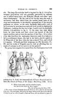 Seite 299