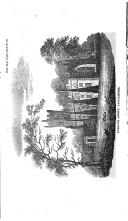 Seite 596