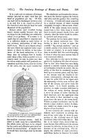 Seite 539